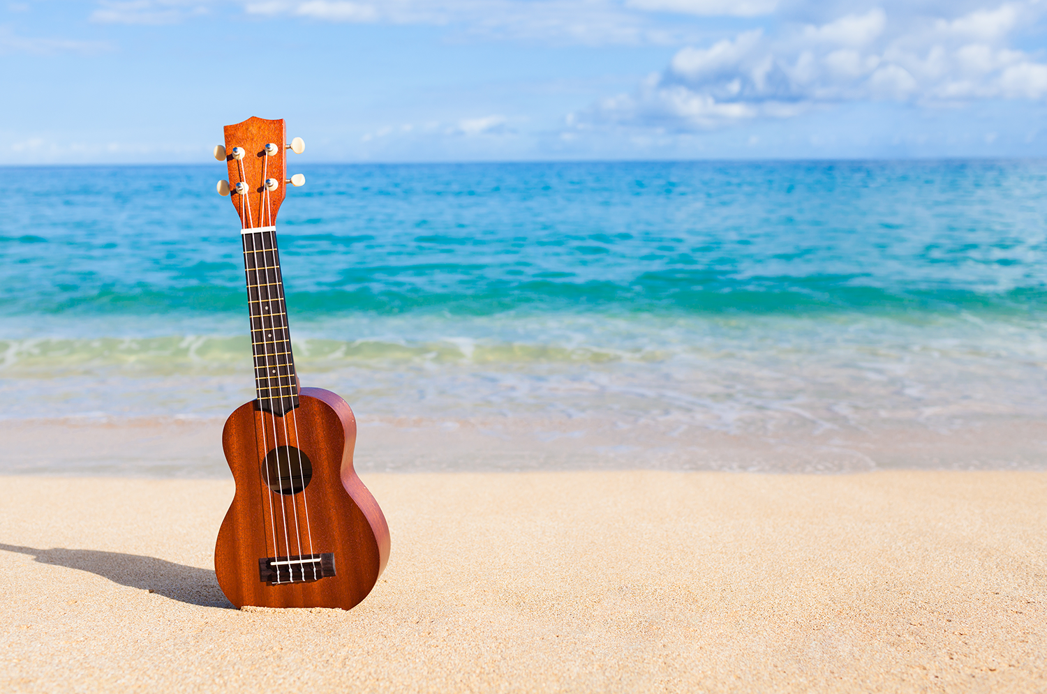 TheSpringmans ukulele happy beach